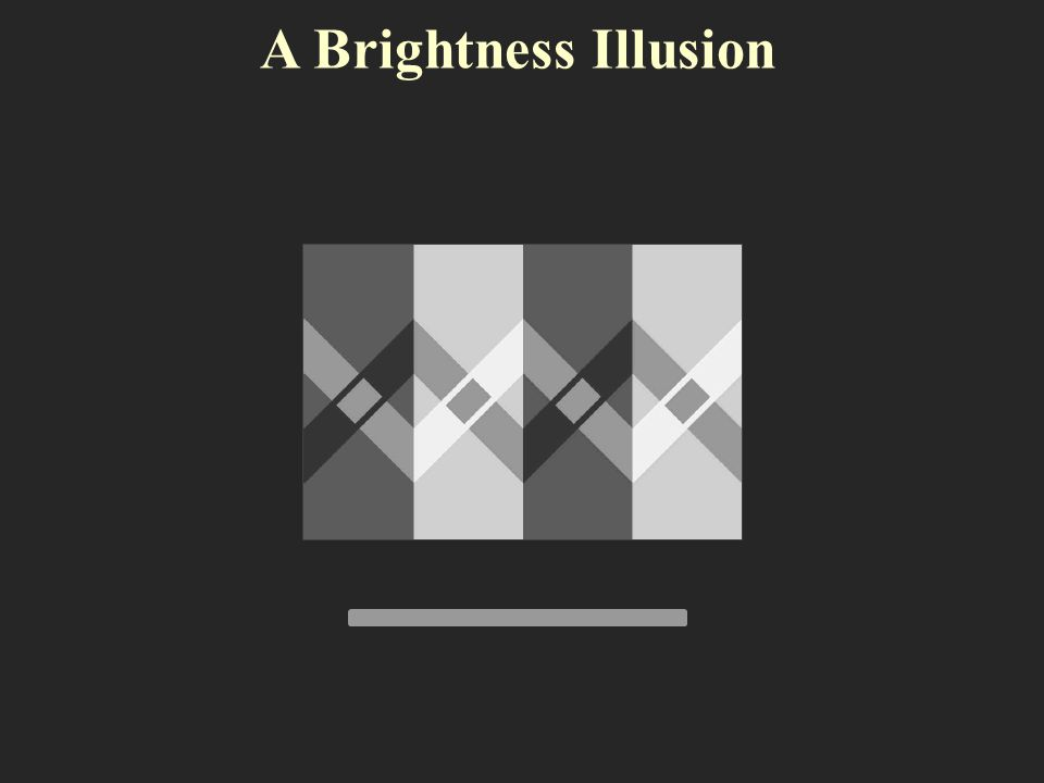 Different kinds of illusions Brightness and Contrast Illusions Twisted Cord Illusions Color Illusions Perspective Illusions Relative Motion Illusions Illusions of Expressions