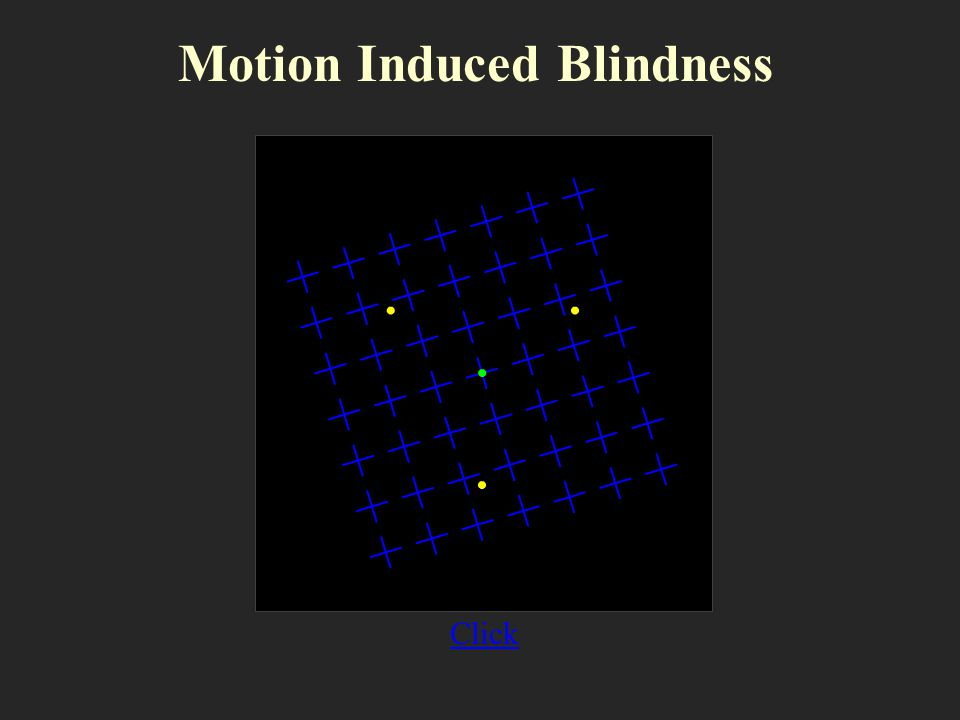 Motion Induced Blindness Click
