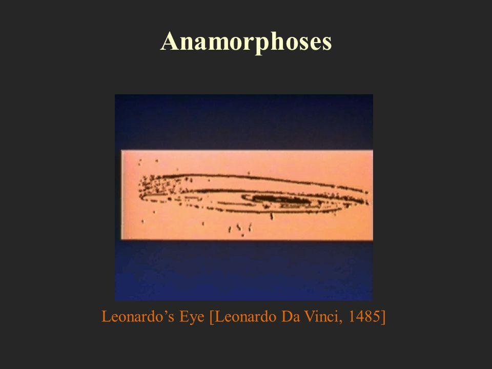 Anamorphoses Leonardos Eye [Leonardo Da Vinci, 1485]