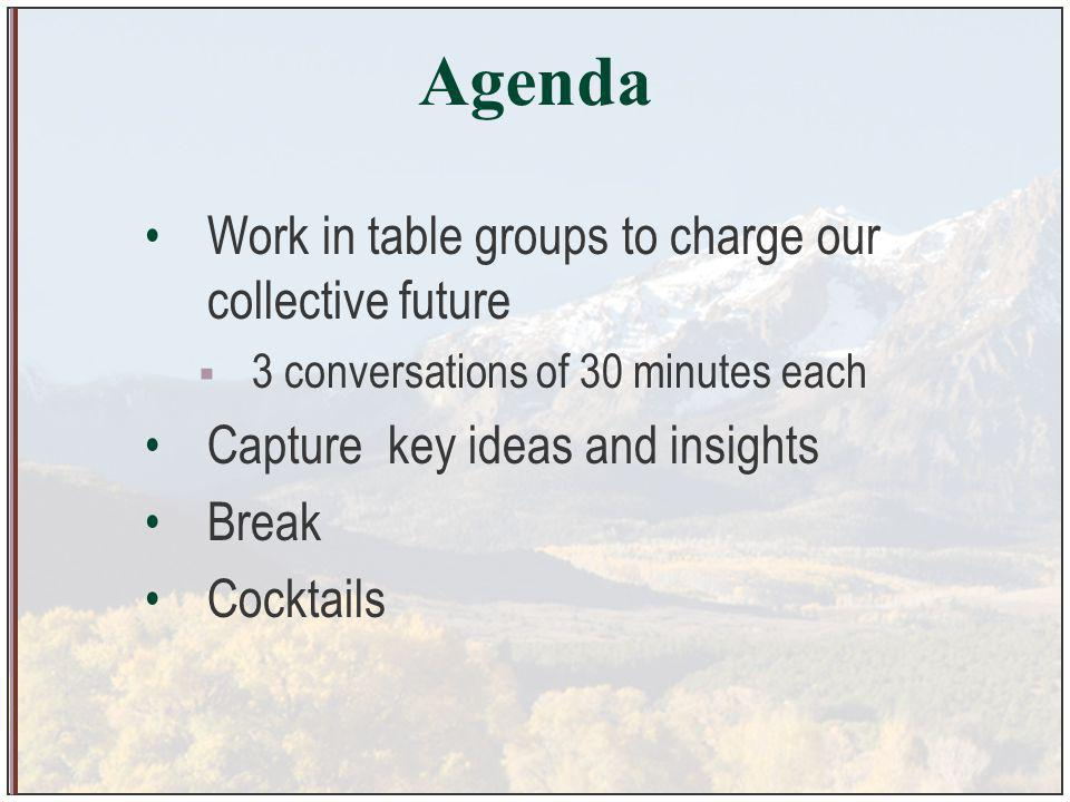 Agenda Work in table groups to charge our collective future 3 conversations of 30 minutes each Capture key ideas and insights Break Cocktails