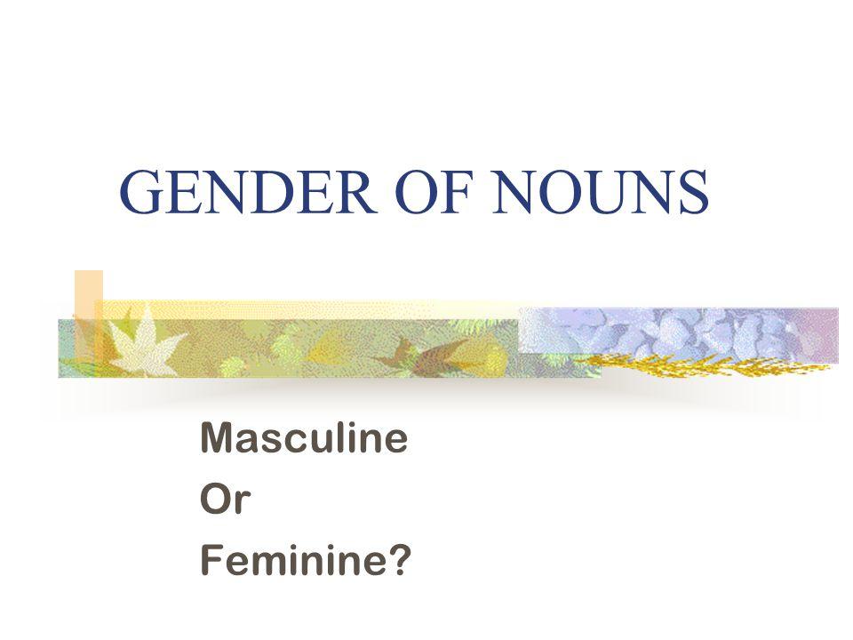 GENDER OF NOUNS Masculine Or Feminine?