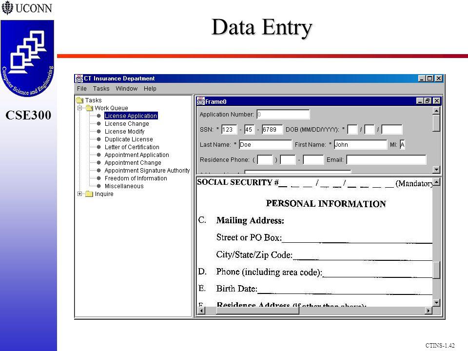 CSE300 CTINS-1.42 Data Entry