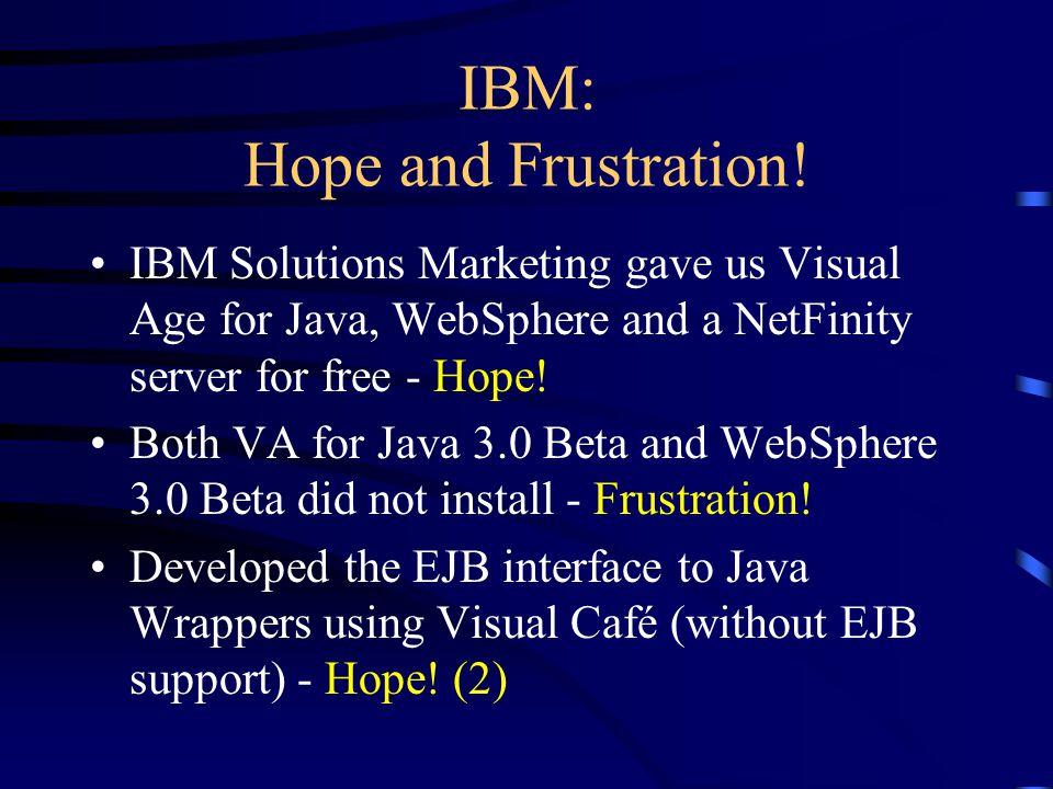 IBM: Hope and Frustration.