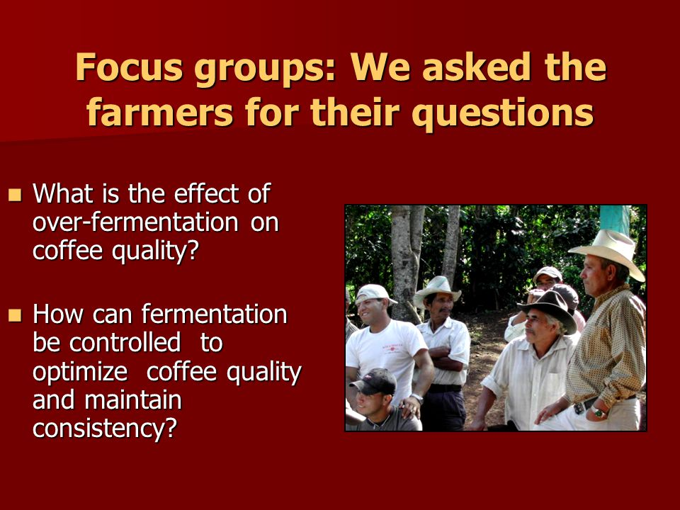 Focus groups: We asked the farmers for their questions What is the effect of over-fermentation on coffee quality.