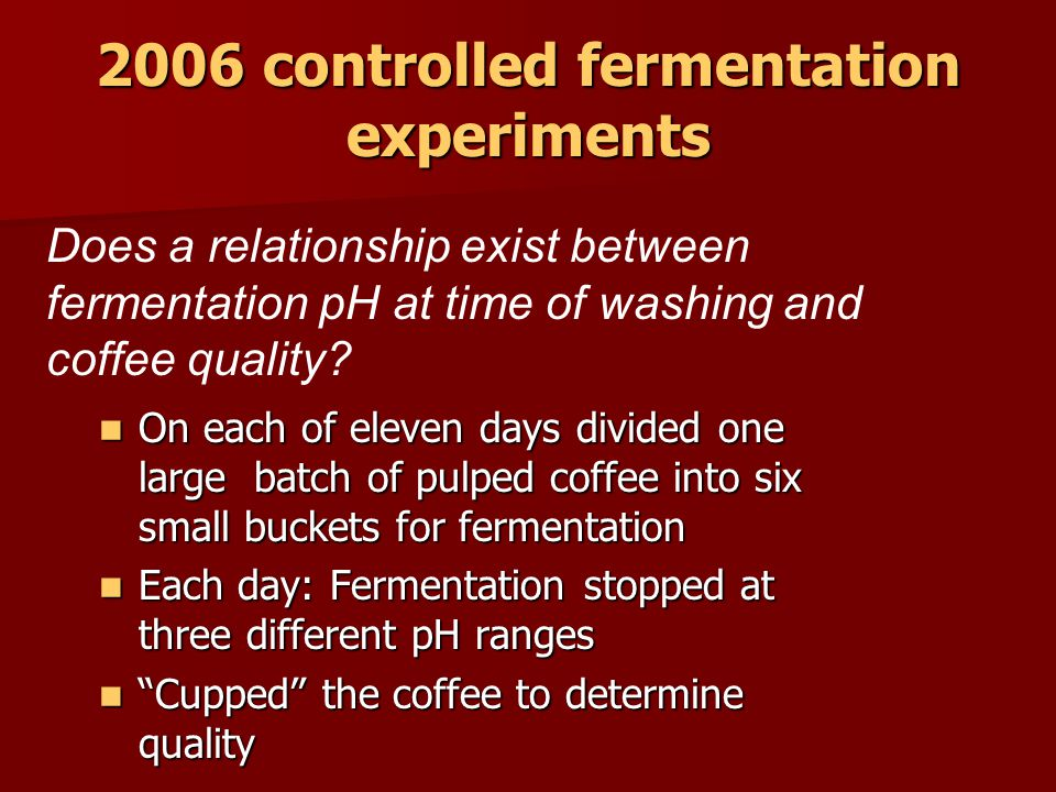 2006 controlled fermentation experiments On each of eleven days divided one large batch of pulped coffee into six small buckets for fermentation On each of eleven days divided one large batch of pulped coffee into six small buckets for fermentation Each day: Fermentation stopped at three different pH ranges Each day: Fermentation stopped at three different pH ranges Cupped the coffee to determine quality Cupped the coffee to determine quality Does a relationship exist between fermentation pH at time of washing and coffee quality
