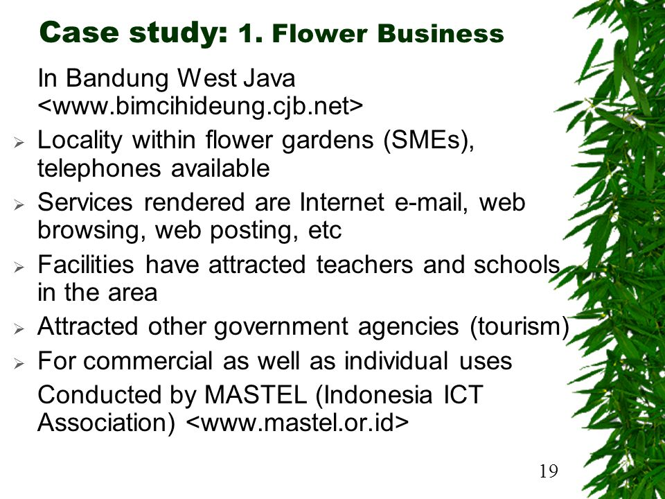 19 Case study: 1. Flower Business In Bandung West Java Locality within flower gardens (SMEs), telephones available Services rendered are Internet e-ma