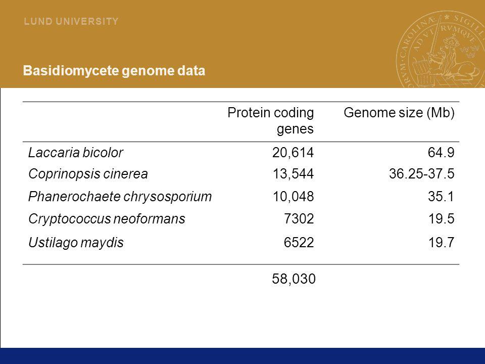 2 L U N D U N I V E R S I T Y Basidiomycete genome data Protein coding genes Genome size (Mb) Laccaria bicolor20,61464.9 Coprinopsis cinerea13,54436.25-37.5 Phanerochaete chrysosporium10,04835.1 Cryptococcus neoformans730219.5 Ustilago maydis652219.7 58,030