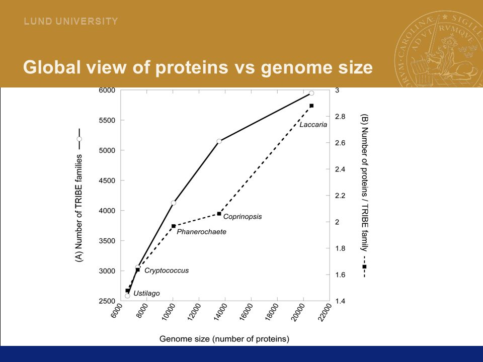 6 L U N D U N I V E R S I T Y Global view of proteins vs genome size