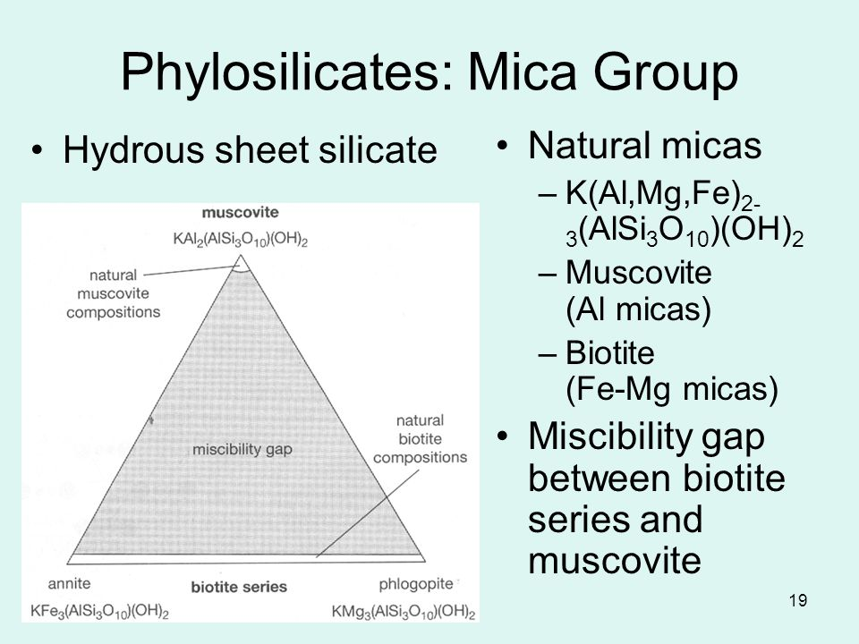 19 Phylosilicates: Mica Group Natural micas –K(Al,Mg,Fe) 2- 3 (AlSi 3 O 10 )(OH) 2 –Muscovite (Al micas) –Biotite (Fe-Mg micas) Miscibility gap betwee