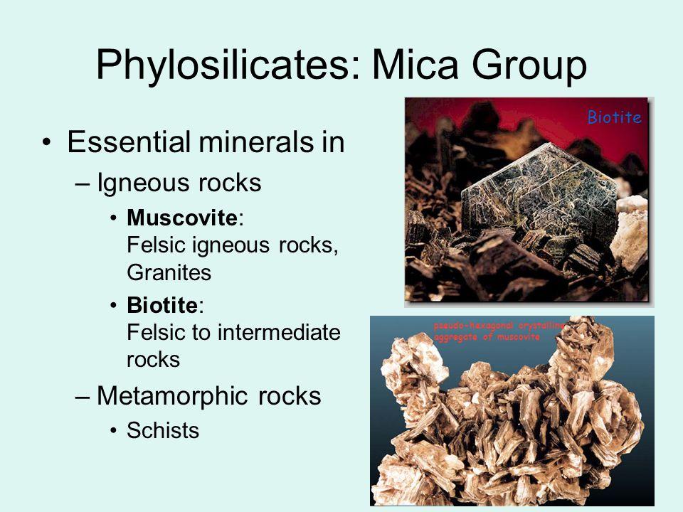 20 Essential minerals in –Igneous rocks Muscovite: Felsic igneous rocks, Granites Biotite: Felsic to intermediate rocks –Metamorphic rocks Schists Bio