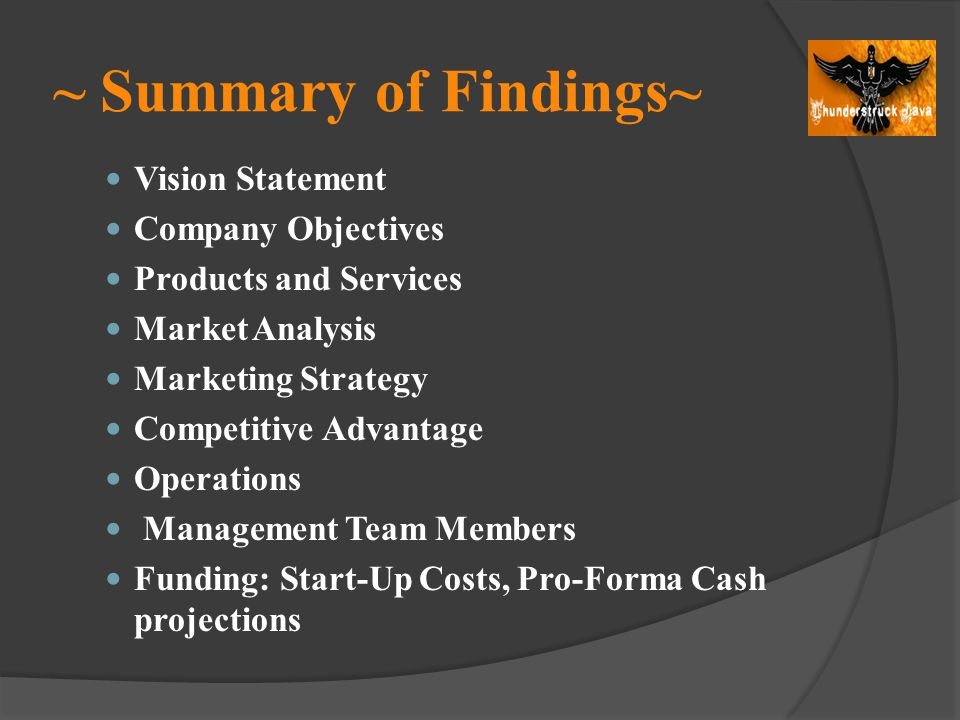 ~ Summary of Findings~ Vision Statement Company Objectives Products and Services Market Analysis Marketing Strategy Competitive Advantage Operations M