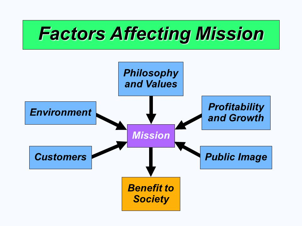 Benefit to Society Mission Factors Affecting Mission Philosophy and Values Profitability and Growth Environment CustomersPublic Image