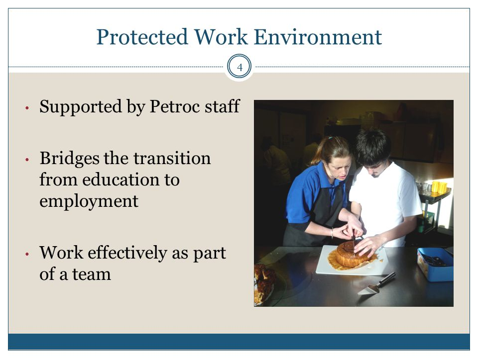 Protected Work Environment Supported by Petroc staff Bridges the transition from education to employment Work effectively as part of a team 4