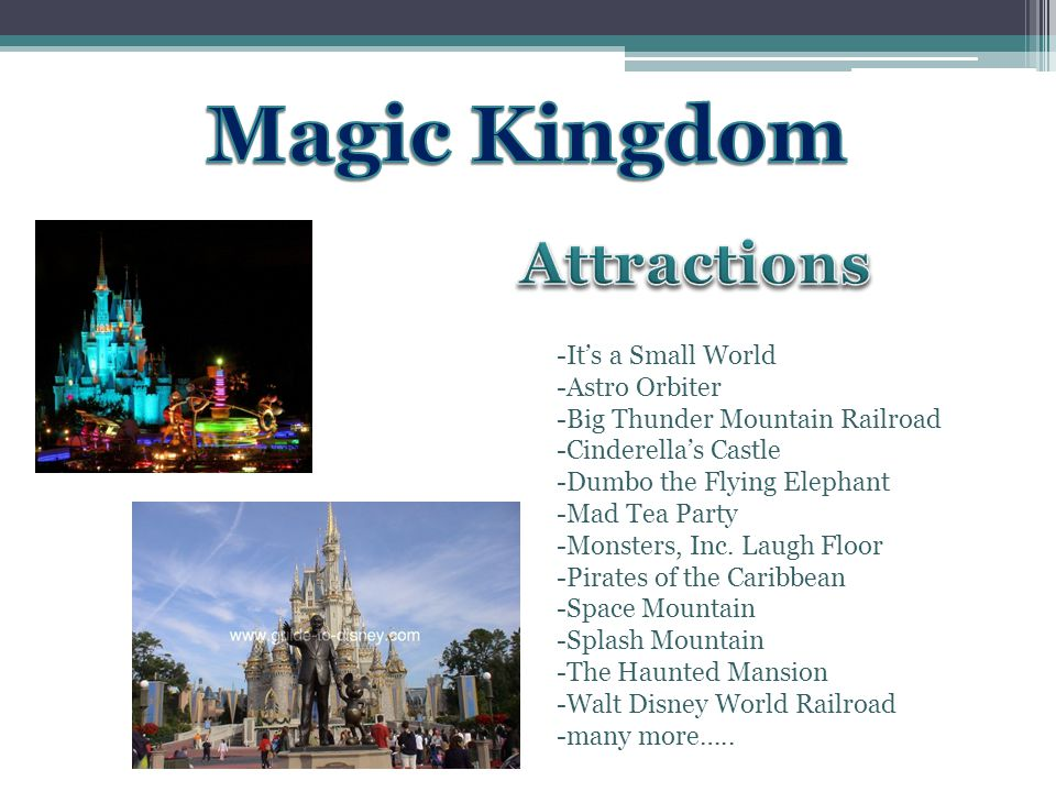 -Its a Small World -Astro Orbiter -Big Thunder Mountain Railroad -Cinderellas Castle -Dumbo the Flying Elephant -Mad Tea Party -Monsters, Inc.