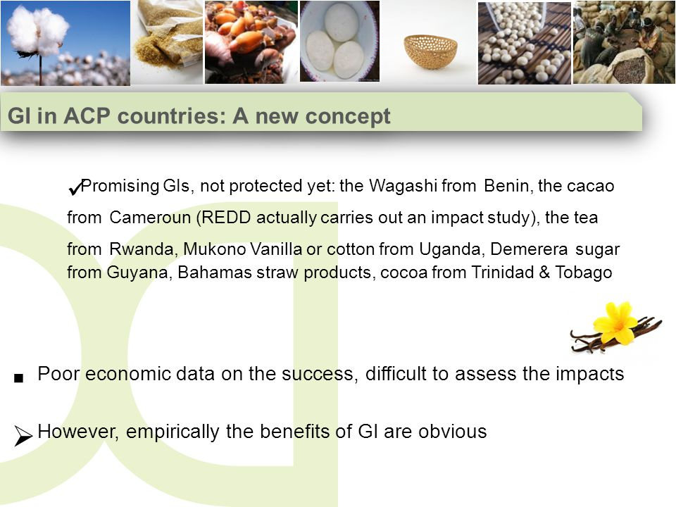 GI in ACP countries: A new concept Promising GIs, not protected yet: the Wagashi from Benin, the cacao from Cameroun (REDD actually carries out an impact study), the tea from Rwanda, Mukono Vanilla or cotton from Uganda, Demerera sugar from Guyana, Bahamas straw products, cocoa from Trinidad & Tobago Poor economic data on the success, difficult to assess the impacts However, empirically the benefits of GI are obvious