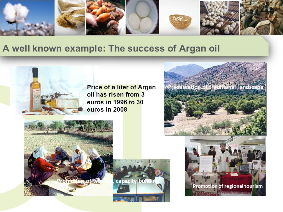 A well known example: The success of Argan oil Promotion of women, capacity building Promotion of regional tourism Price of a liter of Argan oil has risen from 3 euros in 1996 to 30 euros in 2008 Preservation of traditional landscape