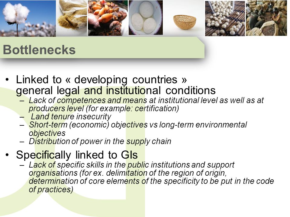 Bottlenecks Linked to « developing countries » general legal and institutional conditions –Lack of competences and means at institutional level as well as at producers level (for example: certification) – Land tenure insecurity –Short-term (economic) objectives vs long-term environmental objectives –Distribution of power in the supply chain Specifically linked to GIs –Lack of specific skills in the public institutions and support organisations (for ex.