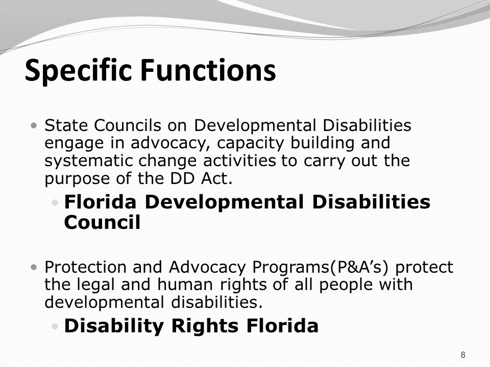 Specific Functions State Councils on Developmental Disabilities engage in advocacy, capacity building and systematic change activities to carry out the purpose of the DD Act.