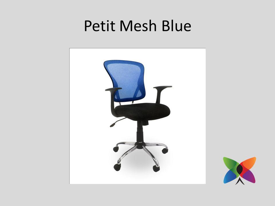 Petit Mesh Blue