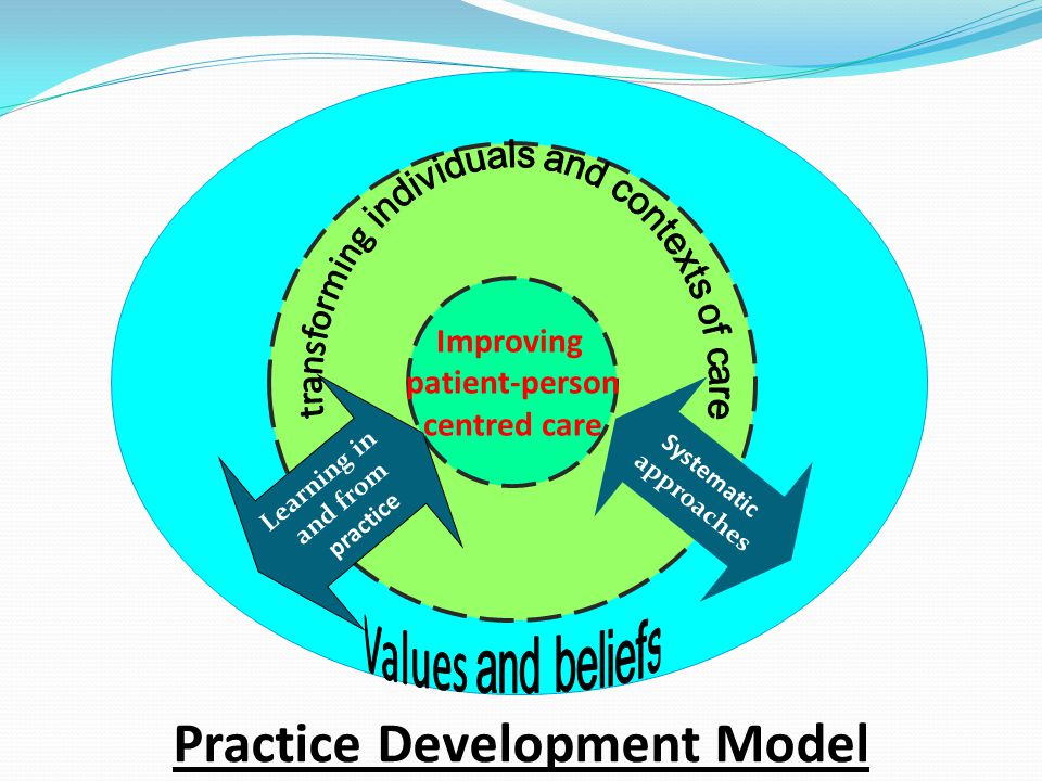 Improving patient-person centred care Learning in and from practice Systematic approaches Practice Development Model
