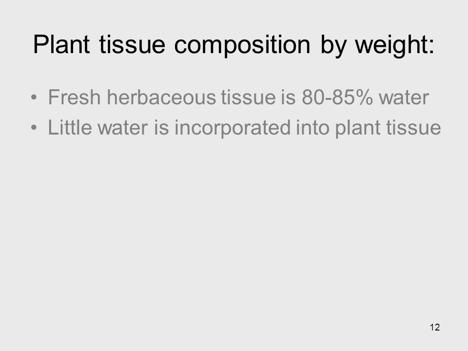 12 Plant tissue composition by weight: Fresh herbaceous tissue is 80-85% water Little water is incorporated into plant tissue