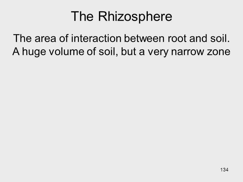 134 The Rhizosphere The area of interaction between root and soil.