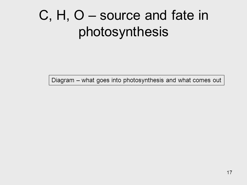 17 Diagram – what goes into photosynthesis and what comes out C, H, O – source and fate in photosynthesis