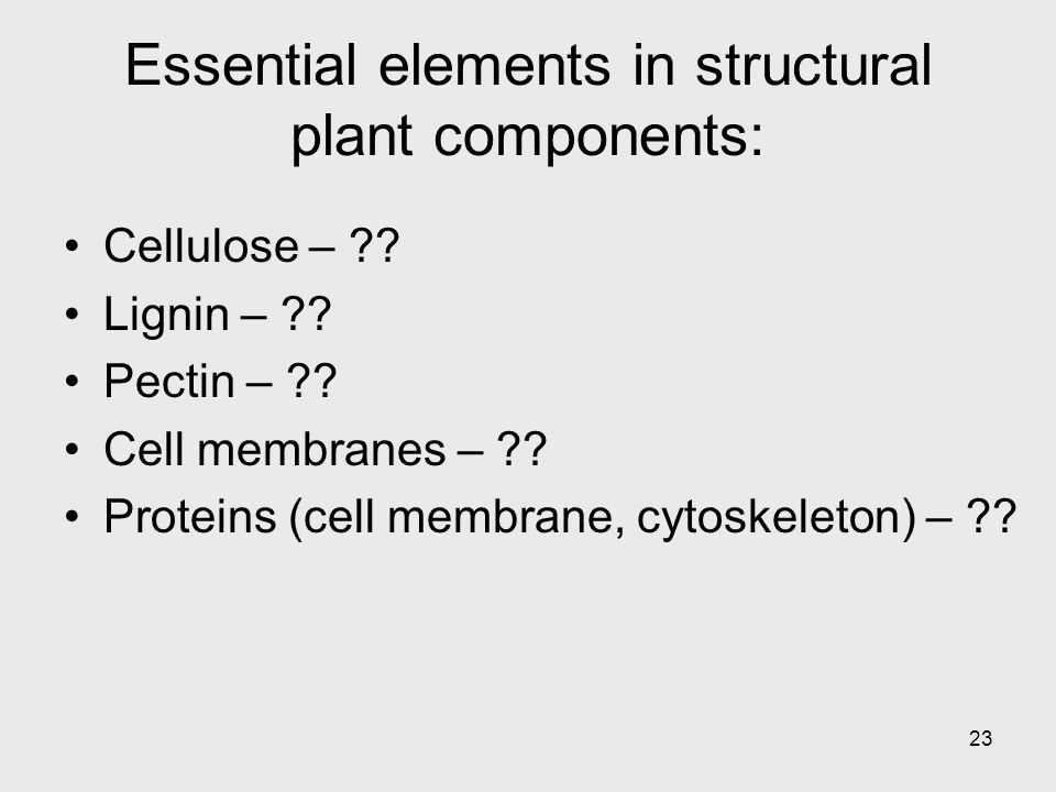 23 Essential elements in structural plant components: Cellulose – ?.