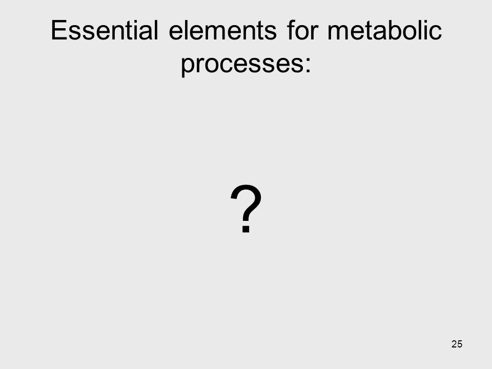 25 Essential elements for metabolic processes: ?