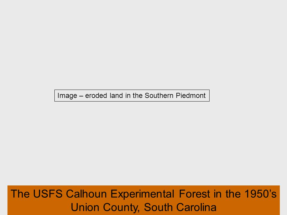 54 Image – eroded land in the Southern Piedmont The USFS Calhoun Experimental Forest in the 1950s Union County, South Carolina