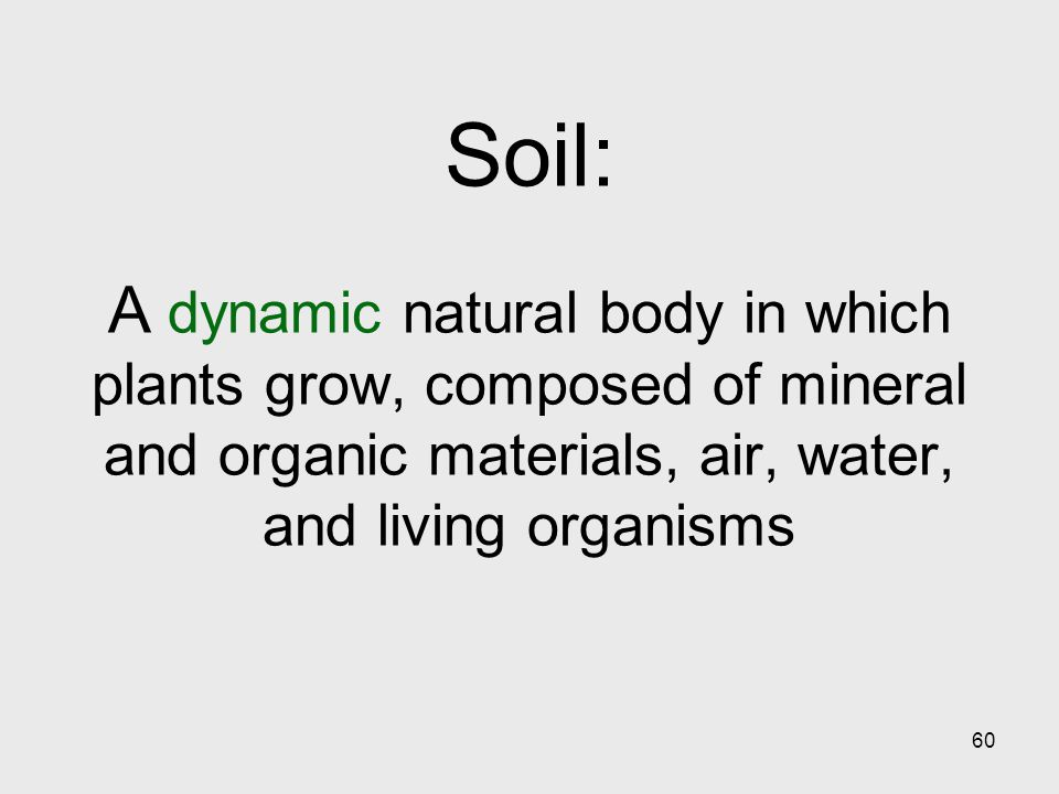 60 Soil: A dynamic natural body in which plants grow, composed of mineral and organic materials, air, water, and living organisms