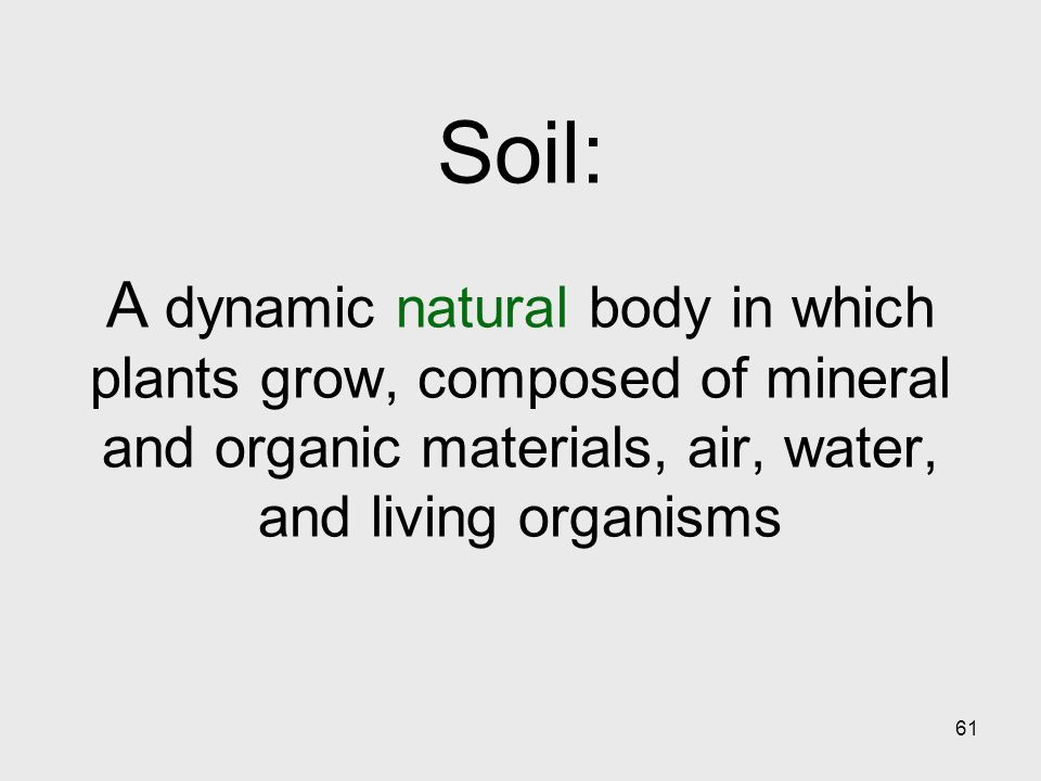 61 Soil: A dynamic natural body in which plants grow, composed of mineral and organic materials, air, water, and living organisms