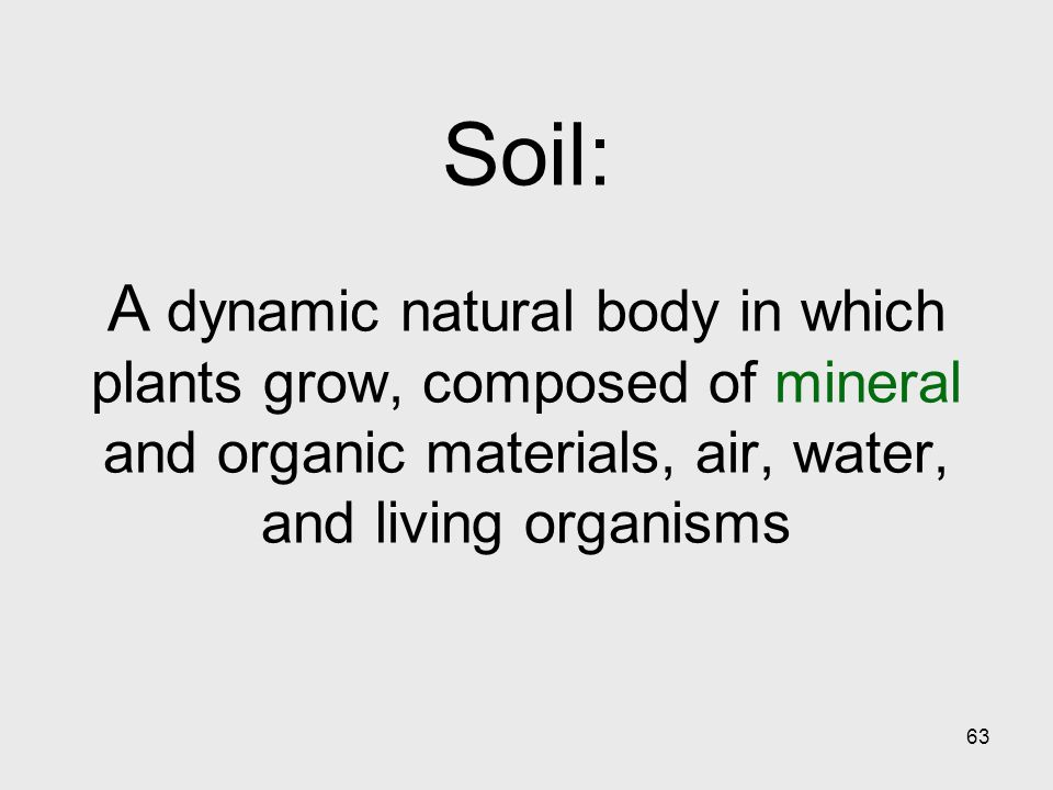 63 Soil: A dynamic natural body in which plants grow, composed of mineral and organic materials, air, water, and living organisms