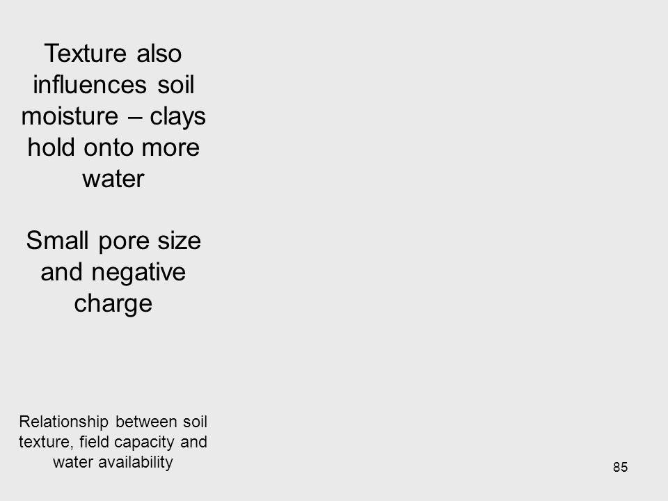 85 Texture also influences soil moisture – clays hold onto more water Small pore size and negative charge Relationship between soil texture, field capacity and water availability