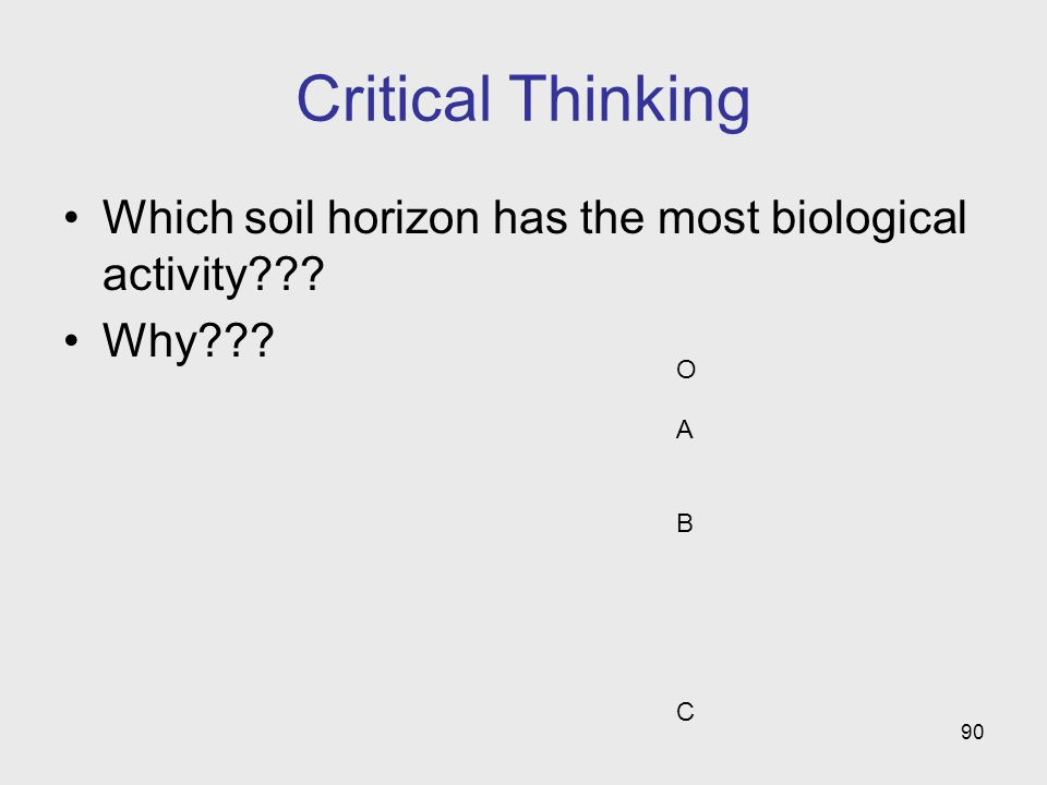 90 Critical Thinking Which soil horizon has the most biological activity??? Why??? OABCOABC
