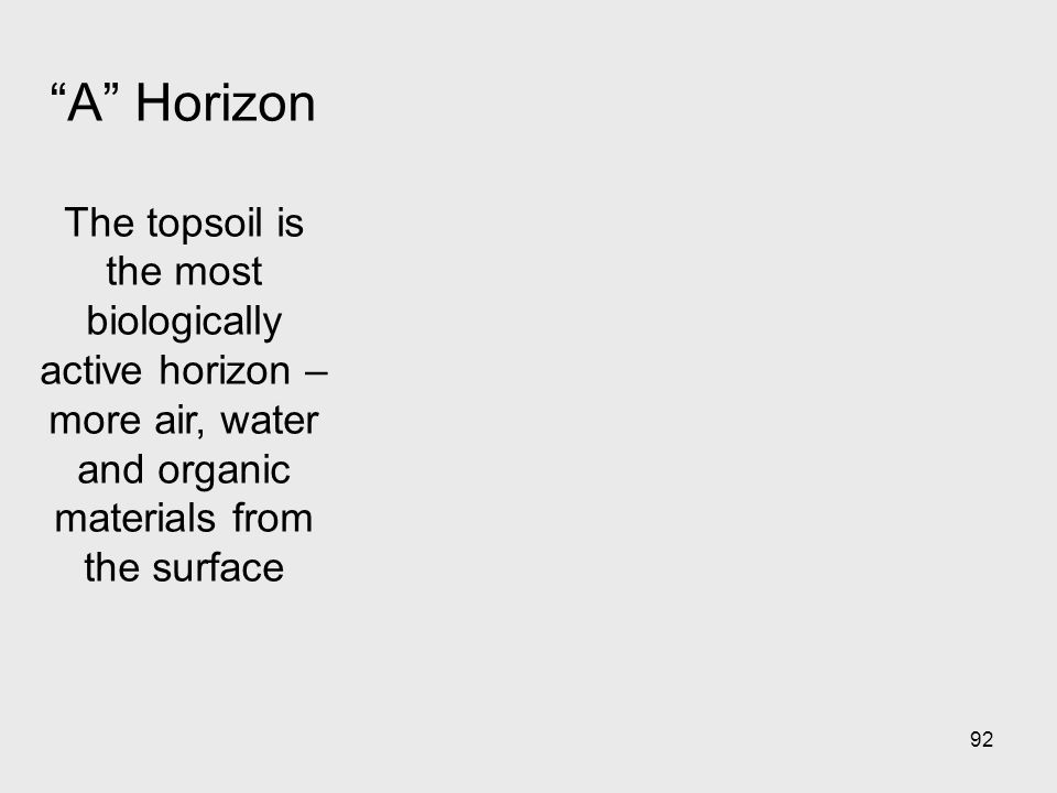 92 A Horizon The topsoil is the most biologically active horizon – more air, water and organic materials from the surface
