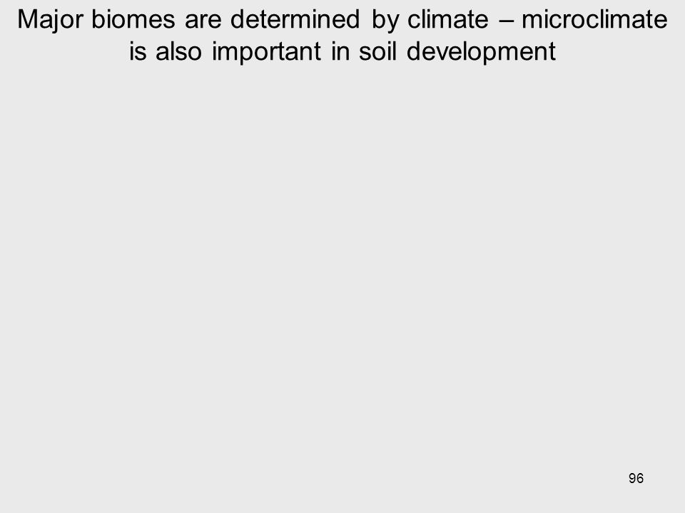 96 Major biomes are determined by climate – microclimate is also important in soil development