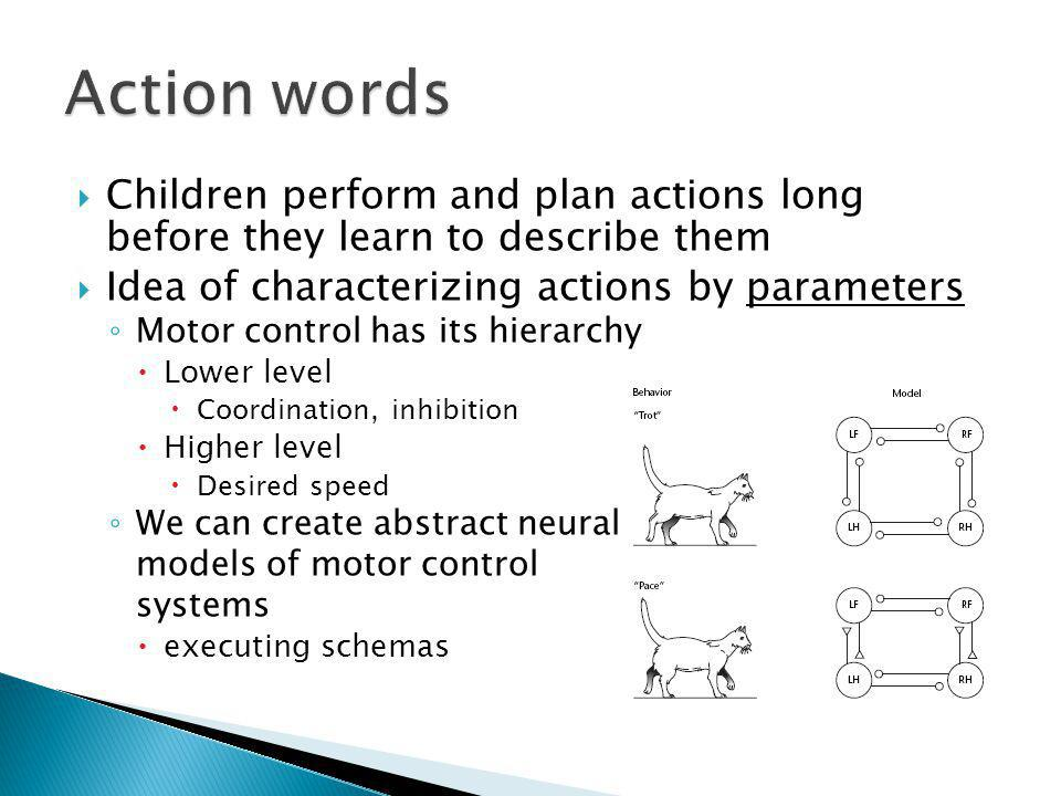 Children perform and plan actions long before they learn to describe them Idea of characterizing actions by parameters Motor control has its hierarchy Lower level Coordination, inhibition Higher level Desired speed We can create abstract neural models of motor control systems executing schemas