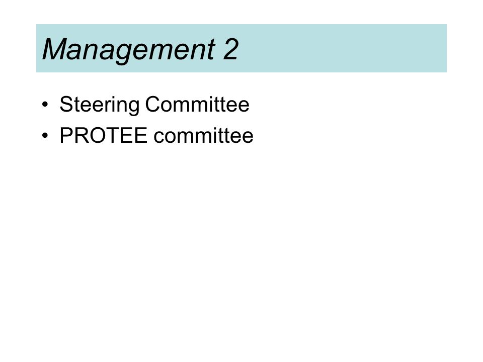 Management 2 Steering Committee PROTEE committee