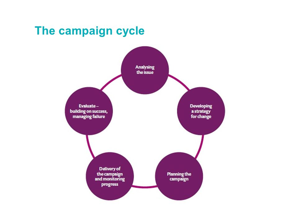 The campaign cycle