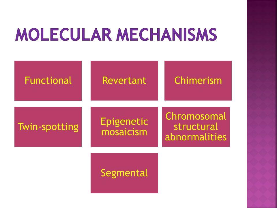 Epigenetic mosaicism Chimerism Segmental Twin-spotting Chromosomal structural abnormalities RevertantFunctional