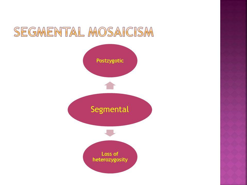 Segmental Postzygotic Loss of heterozygosity
