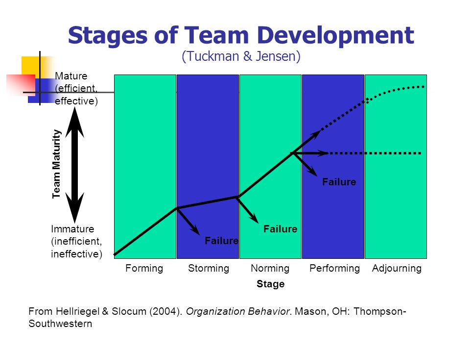 Stages of Team Development (Tuckman & Jensen) FormingStormingNormingPerformingAdjourning Team Maturity Mature (efficient, effective) Immature (inefficient, ineffective) Failure Stage From Hellriegel & Slocum (2004).