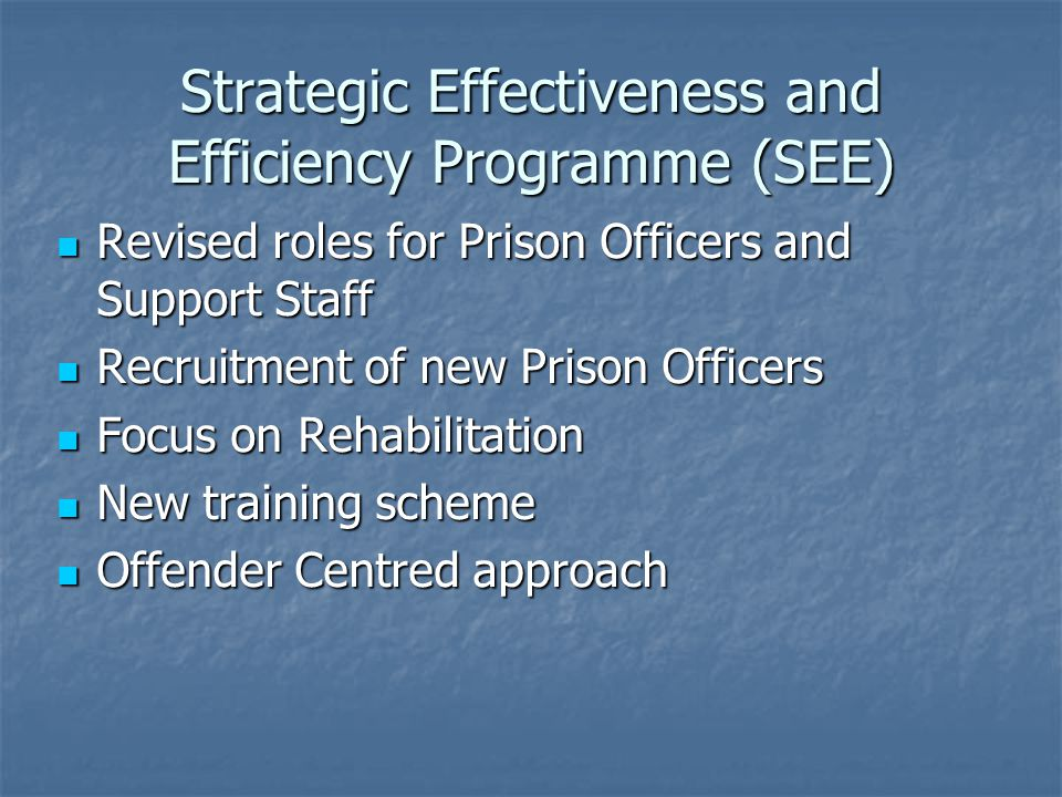 Strategic Effectiveness and Efficiency Programme (SEE) Revised roles for Prison Officers and Support Staff Revised roles for Prison Officers and Support Staff Recruitment of new Prison Officers Recruitment of new Prison Officers Focus on Rehabilitation Focus on Rehabilitation New training scheme New training scheme Offender Centred approach Offender Centred approach