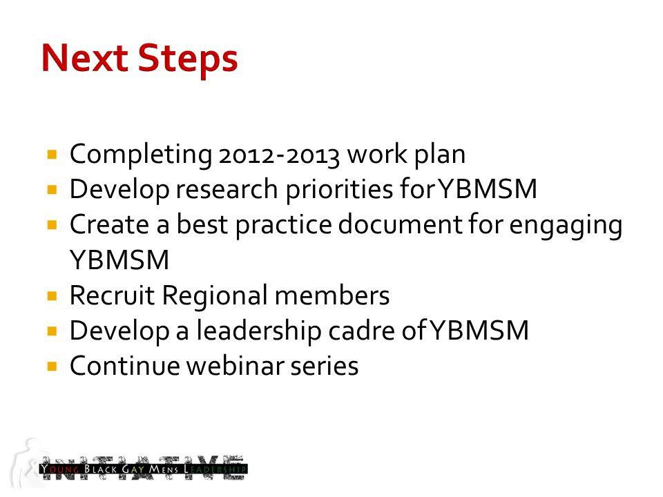 Completing 2012-2013 work plan Develop research priorities for YBMSM Create a best practice document for engaging YBMSM Recruit Regional members Develop a leadership cadre of YBMSM Continue webinar series