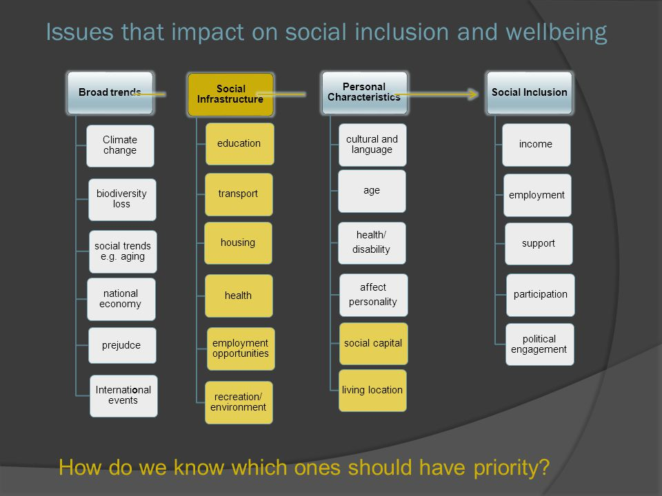 Issues that impact on social inclusion and wellbeing Social Infrastructure educationtransporthousinghealth employment opportunities recreation/ enviro