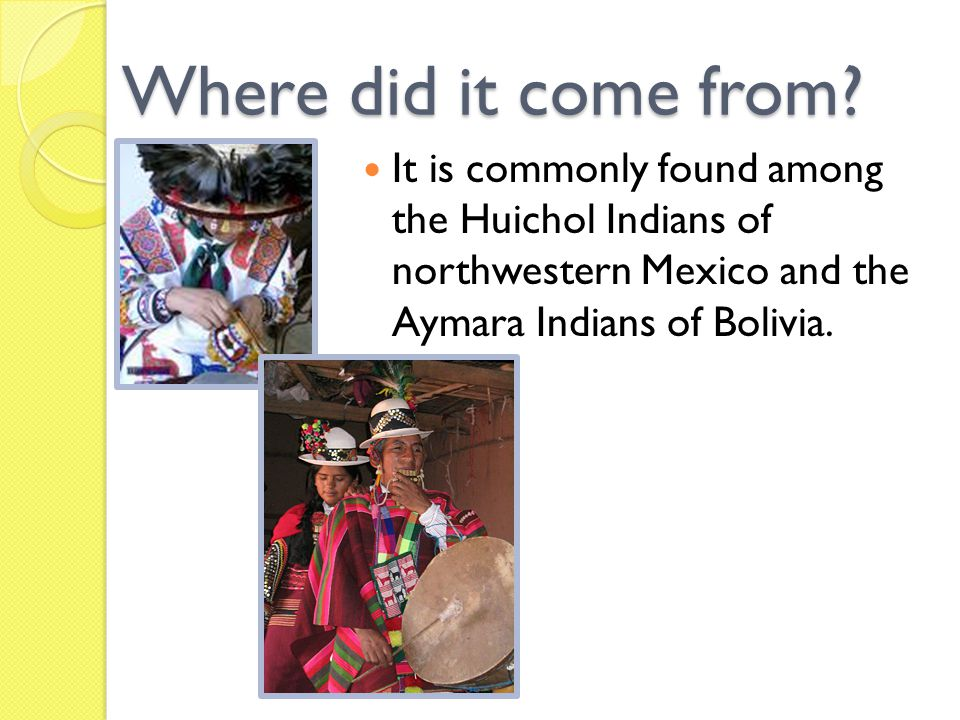 Naming Named after the Sikuli God by the Huichol Indians from Mexico