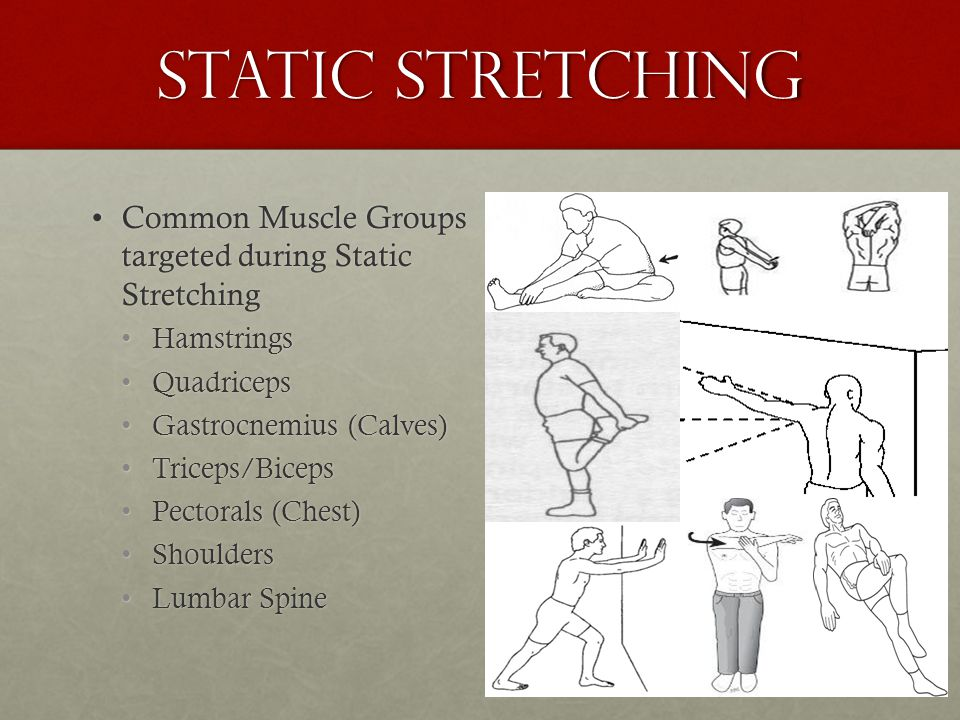 Static stretching Common Muscle Groups targeted during Static StretchingCommon Muscle Groups targeted during Static Stretching HamstringsHamstrings Qu