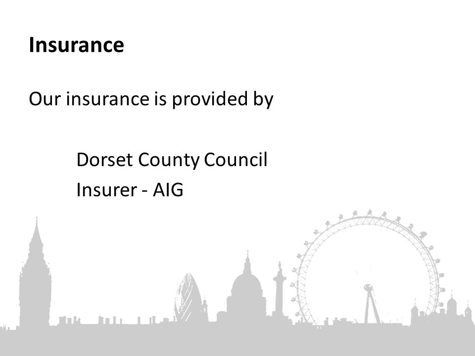 Insurance Our insurance is provided by Dorset County Council Insurer - AIG