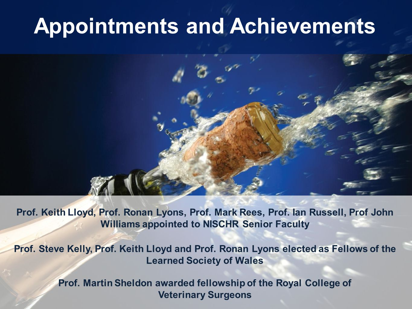 Appointments and Achievements Prof. Keith Lloyd, Prof. Ronan Lyons, Prof. Mark Rees, Prof. Ian Russell, Prof John Williams appointed to NISCHR Senior